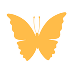 amber-butterfly